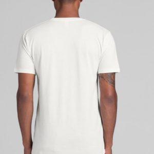 Organic Cotton Light-weight T-shirt - unisex sizing