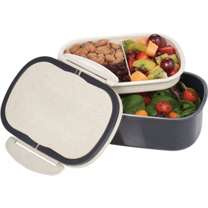 Wheat Straw & Plastic Lunch Box